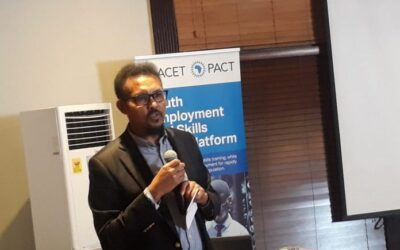 Spin-Offs, Joint Venture Will Spur Growth – Ethiopian Scholar